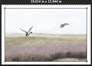 Screen Shot 2014-10-11 at 3.23.52 PM